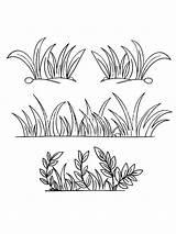 Grass Coloring Gras Nature Mycoloring Ausmalbilder Printable Ausdrucken Malvorlagen Kostenlos Zum sketch template