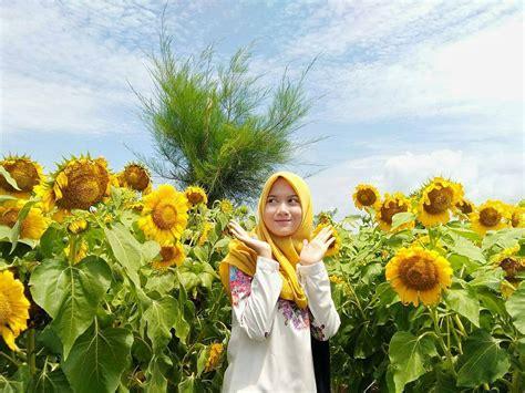 spot kece taman bunga matahari de jogja adventure