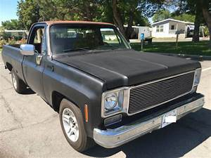 1976 Chevrolet Scottsdale C10 Truck   Customized   For
