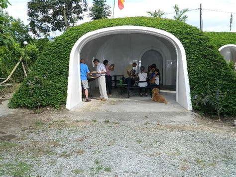 company builds eco friendly hobbit hole   days freeyork