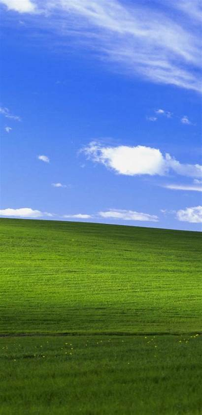 Xp Windows 4k Bliss Iphone Wallpapers Background