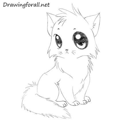 How To Draw A Cartoon Cat For Kids Drawingforallnet