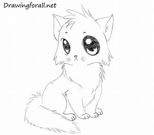 How to Draw a Cartoon Cat for Kids | DrawingForAll.net