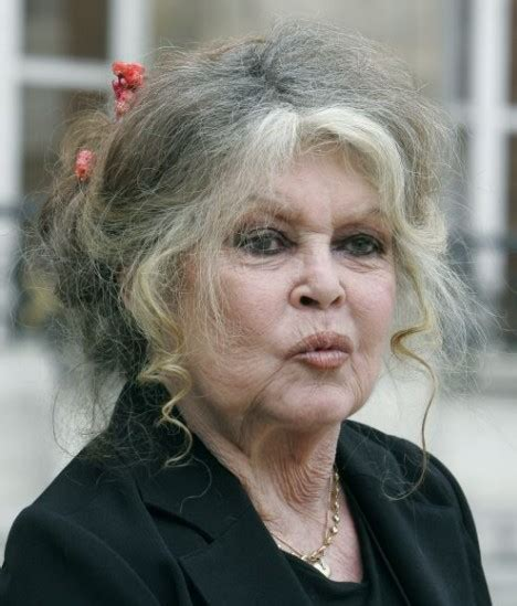 brigitte bardot faces jail  muslim race hate row daily mail