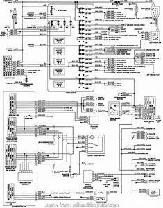 Isuzu  Electrical Wiring Diagram Practical Isuzu Truck