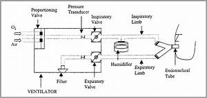 Modes Of Mechanical Ventilation  Part 1