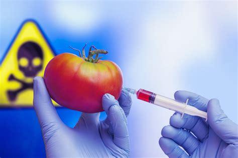 Alimenti Geneticamente Modificati Cibi Transgenici Cosediscienza It