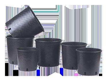 vasi in plastica per vivai come scegliere i vasi per vivai scelta dei vasi ecco