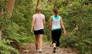 Bradleys Head to Chowder Bay walk | NSW National Parks