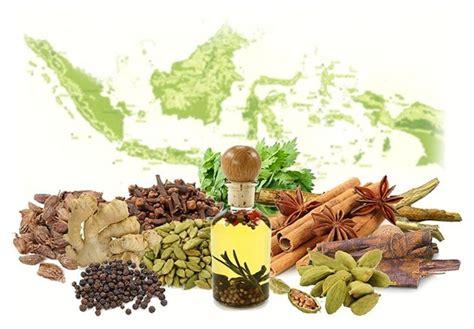 cara mudah membuat obat kuat pria secara alami tradisional jual suplemen herbal alami
