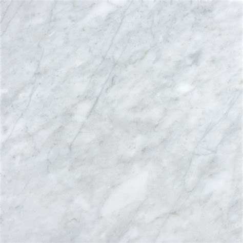 shop allen roth venatino white marble floor and wall