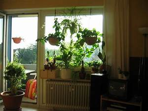 Wie Streiche Ich Meine Wohnung : wohnzimmer f nf in einem von madeleine 110 zimmerschau ~ Bigdaddyawards.com Haus und Dekorationen