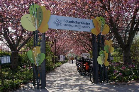 Botanischer Garten Rostock by Gartenroute Mecklenburg Vorpommern Botanischer Garten
