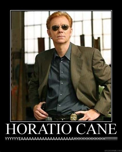 Caruso Meme - 18 awesome david caruso memes screen junkies david caruso images pictures photos icons
