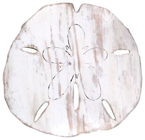 """Sand dollar removable wallpaper tiles. Giant Sand Dollar 24"""" Wall Decor - Beach Style - Wall Accents - Other - by Haven America"""