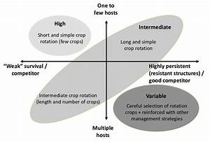 Effectiveness Of Crop Rotation For Disease Management