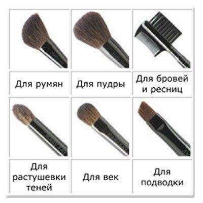 5 необходимых кистей для макияжа . Практика на