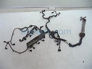 2004 Honda Civic Engine Wire Harness 32110
