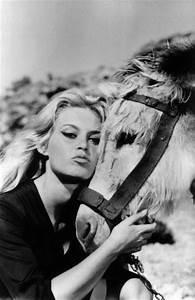 282 best Brigitte Bardot images on Pinterest | Bardot ...