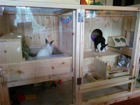 Creative Rabbit Hutches - gorgeous indoor home for bunnies page 3 rabbits united