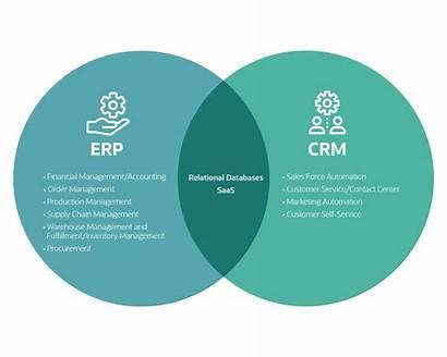 Erp Crm Difference Netsuite Between Diagram Venn