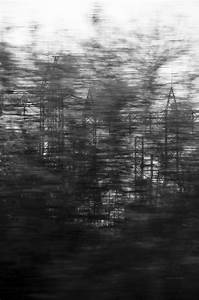 black and white, blurry, pale, photography, trees, tumblr ...