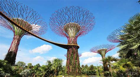 gardens by the bay singapore gardens by the bay tickets cloud forest