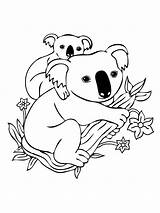 Koala Coloring Pages Baby Mother Printable sketch template