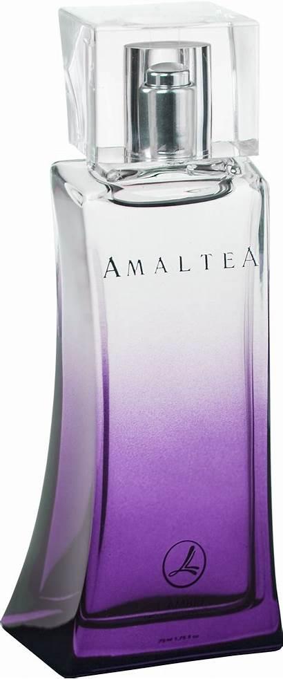 Perfume Transparent Clipart Webstockreview Pngimg