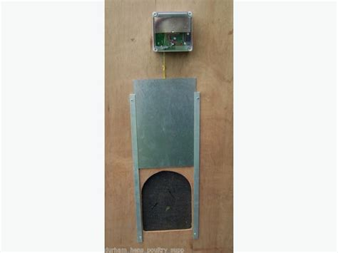 best automatic chicken door automatic chicken door opener outside nanaimo nanaimo