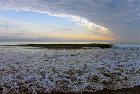 Morro Bay Dog Beach Emdot