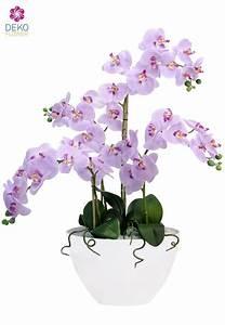 Künstliche Pflanzen Wie Echt : die besten 25 k nstliche orchideen ideen auf pinterest ~ Michelbontemps.com Haus und Dekorationen