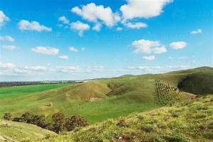 Image, Of, Rolling, Green, Hills, Of, The, Barossa, Valley, South