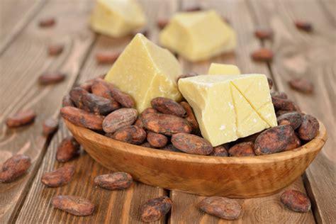 beurre de cacao cuisine les b 233 n 233 fices du beurre de cacao pour la peau amina