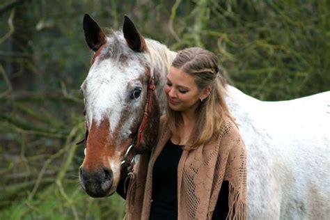 bodenarbeit pferd die besten tipps und uebungen