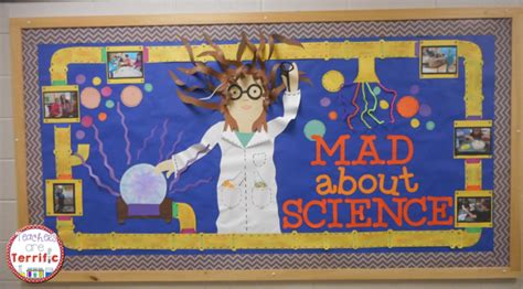 mad  science bulletin boards science lab science