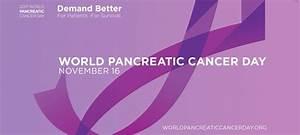 Pancreatic Cancer  U2018world Pancreatic Cancer Day U2019 Campaign