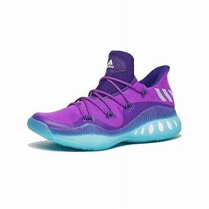 Adidas Explosive Crazy Low Hornets Collegiate Purple