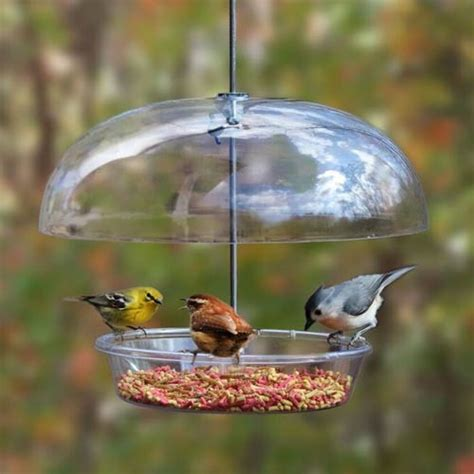 bountiful bowl feedertm cole s wild bird feed