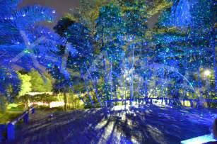 laser light for outdoor decoration projector elf light christmas lights garden laser light view