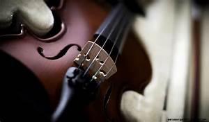 Music Instrument Close Up Violin Hd Wallpaper | Wallpaper ...