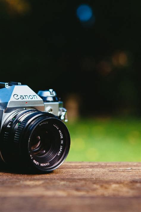 Nature, Photography, Analog Camera  Cc0 Pinterest