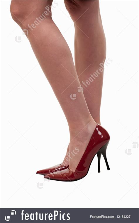 human body parts woman legs stock picture