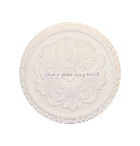 Small Plaster Ceiling Rose by 17 Small Dentil Plaster Ceiling Rose 432mm