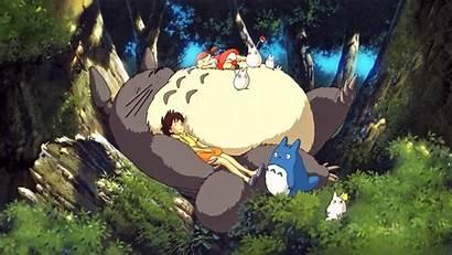 Totoro Neighbor Wallpapers Anime Wallpapersafari
