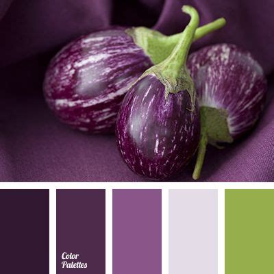best 25 eggplant color ideas on