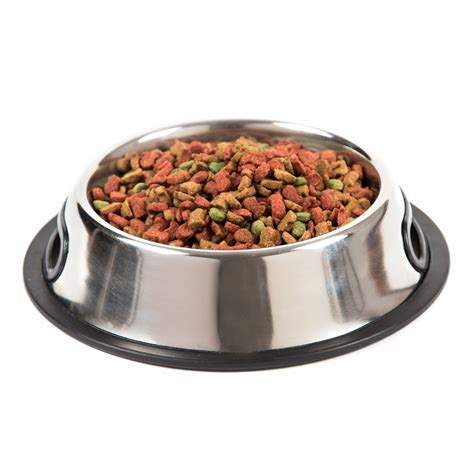dog bowls feeders food water dispensers