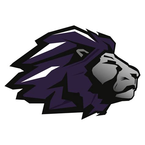Boys Varsity Football TCHS Lions - Trinity Christian High ...