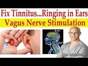 Fix Tinnitus  Ringing In Ears  Major Breakthrough How To