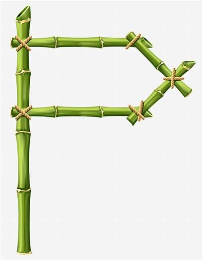 Bamboo Stick Clipart Sticks Webstockreview Shelves Shelf